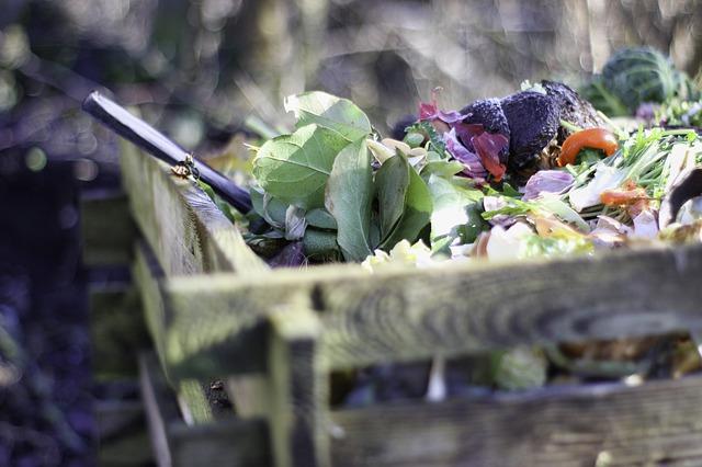 hari peduli sampah nasional