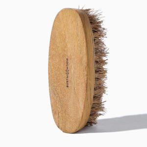 sikat kayu ramah lingkungan